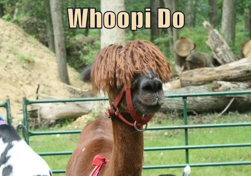 llama,whoopie goldberg