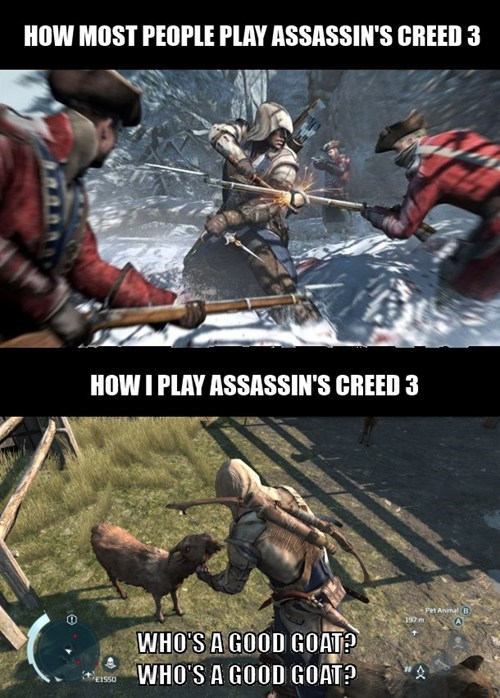 goats,assassins creed,animals