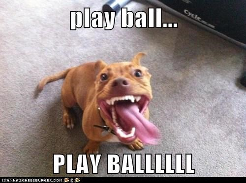 teeth ball play dogs - 7775798528