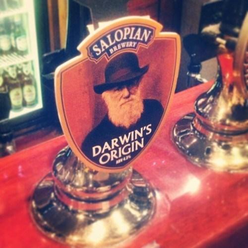 beer tap Darwin funny - 7776317440