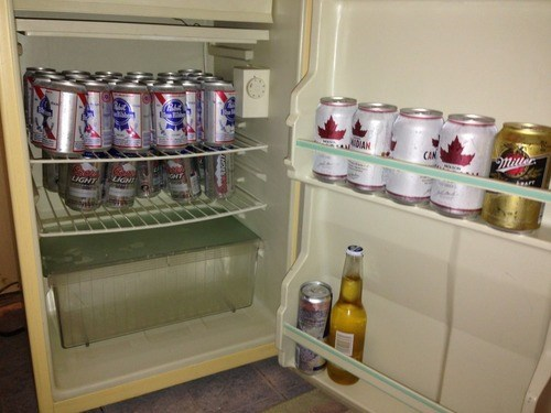 beer,gross,molsen,pbr,fridge,funny