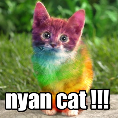 Nyan Cat,kttens,rainbow