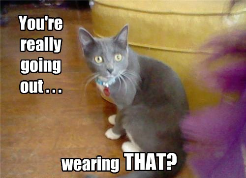 You're really going out . . . wearing THAT?