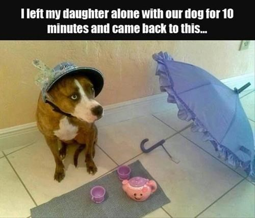 dogs,kids,parenting,funny,tea party,g rated
