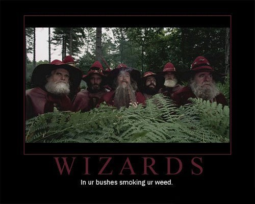 wtf wizards drug stuff funny - 7777221632