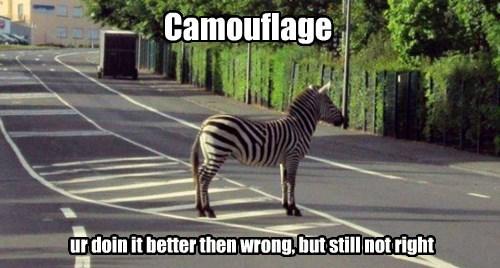 zebra stripes camouflage - 7777232128