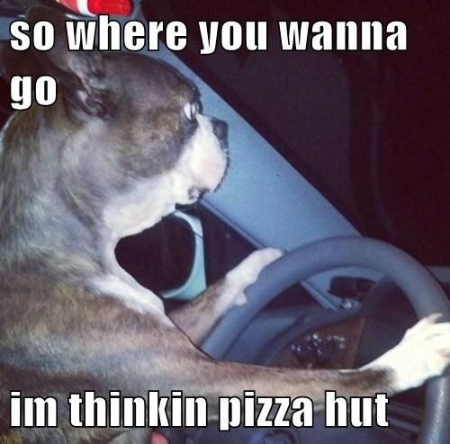 pizza,driving