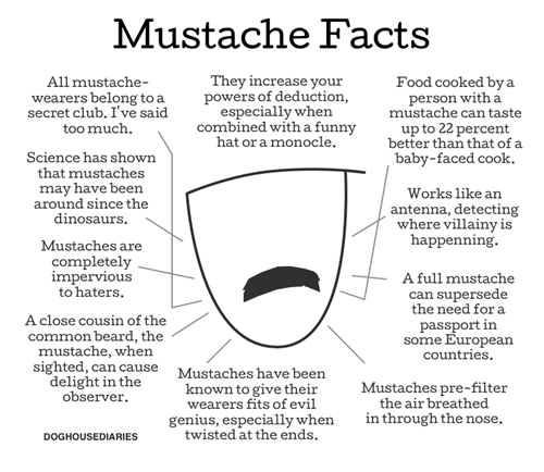 delight,mustache,facts,poorly dressed,g rated