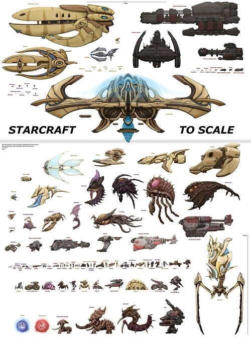 starcraft scale infographic - 7777452288