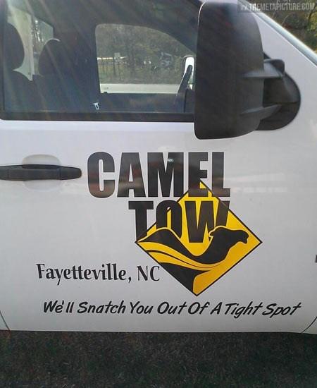 camel,tow,puns