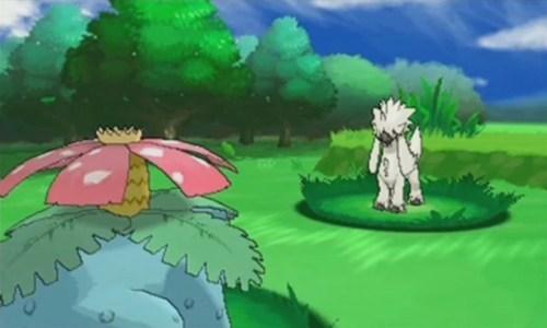 unknown pokemon pokemon direct - 7778524416