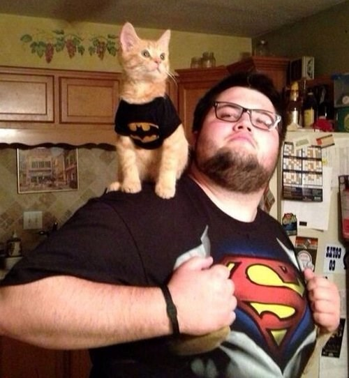 You Were Supposed to be Robin, Human!