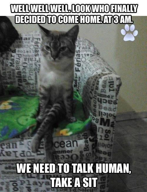take a seat talk - 7778711040