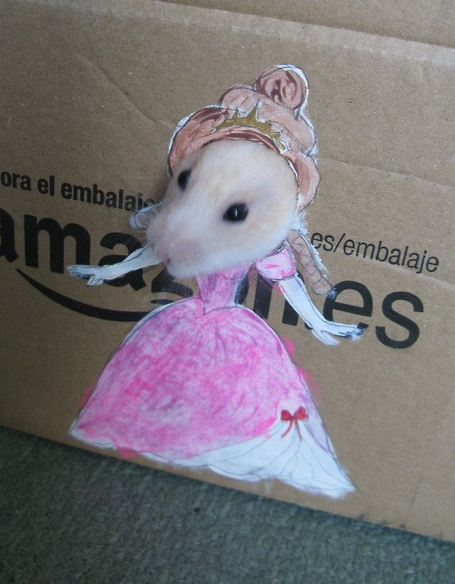 princess clever hamster costume dress up DIY