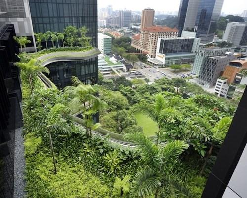 hotel garden design Travel - 7778826496