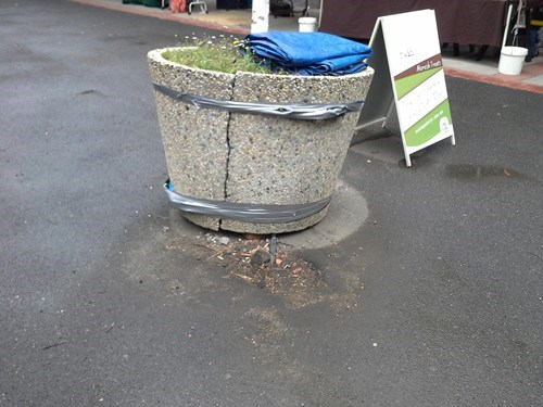 planter,duct tape,funny,there I fixed it
