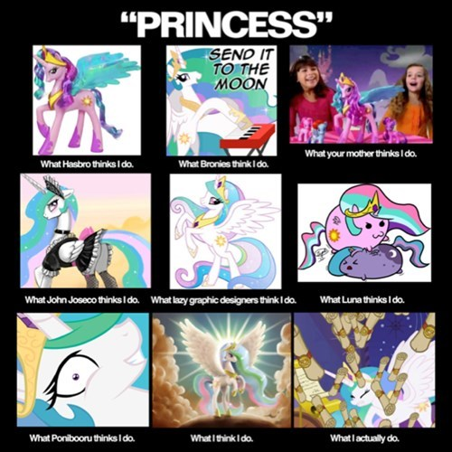 what people think i do,princess celestia