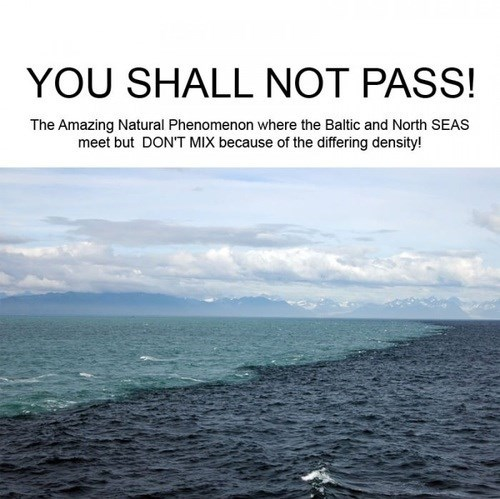 nature science you shall not pass - 7780754432