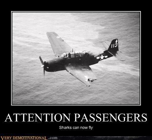 wtf shark funny airplane - 7780889600