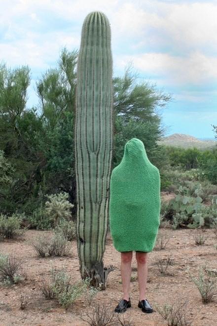 fashion,wtf,cactus,funny