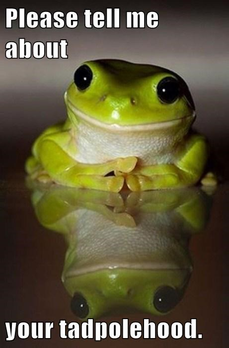 puns cute tadpole frogs - 7781463040