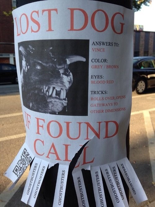 lost dog Ghostbusters - 7782232064