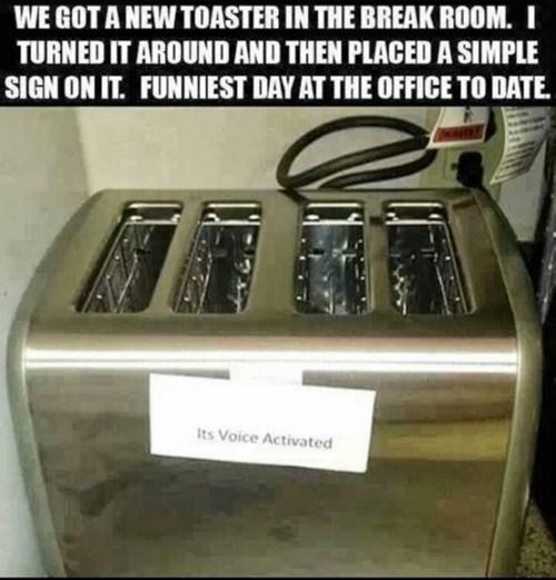 voice activated toast toaster - 7782244096