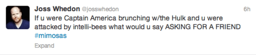 twitter avengers 2 captain america Joss Whedon mimosa hulk - 7782339840