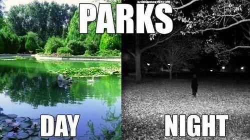 parks outside - 7782593536
