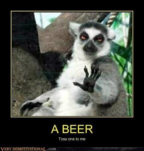 beer monkey funny animals - 7782636032