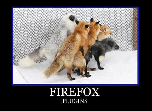 wtf firefox sexy times animals - 7782806272