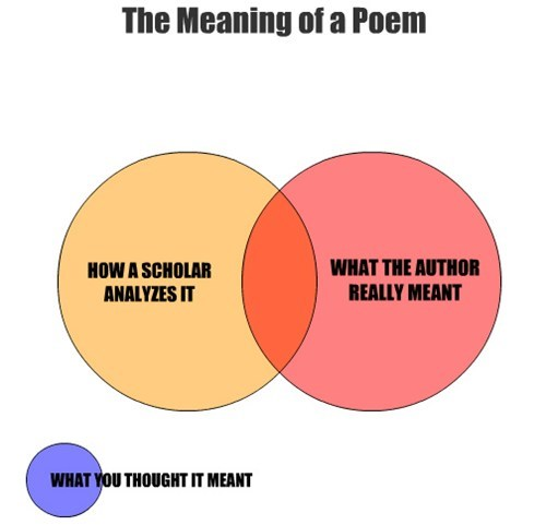 HOW A SCHOLAR ANALYZES IT WHAT THE AUTHOR REALLY MEANT The Meaning of a Poem WHAT YOU THOUGHT IT MEANT