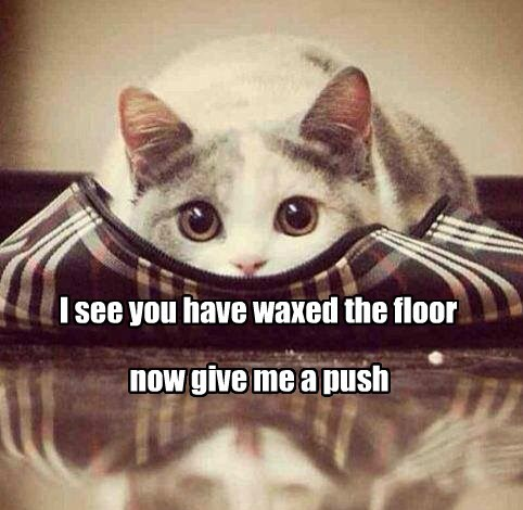 I see you have waxed the floor now give me a push