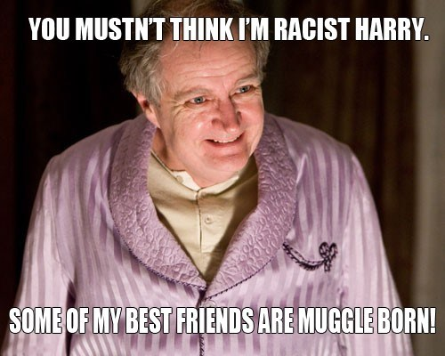 racism Harry Potter muggles