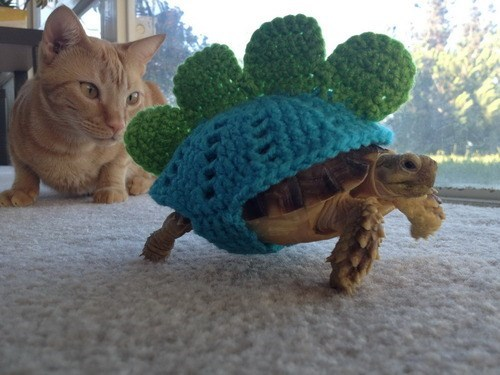 yarn costume turtle - 7785129984