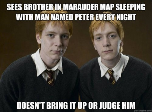 Harry Potter,peter pettigrew,good guy,weasley twins