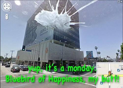 Cheezburger Image 7787967488