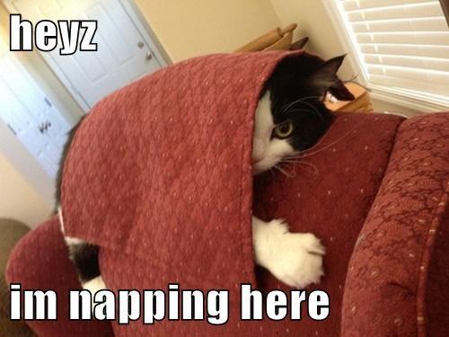 heyz  im napping here
