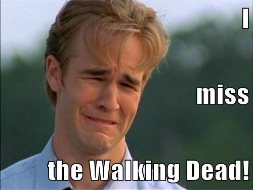 I  miss the Walking Dead!
