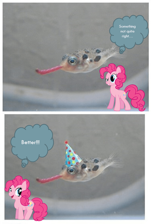 worms pinkie pie parties fish animals - 7788389376