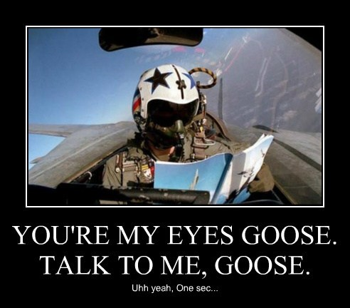 top gun manual goose pilot funny