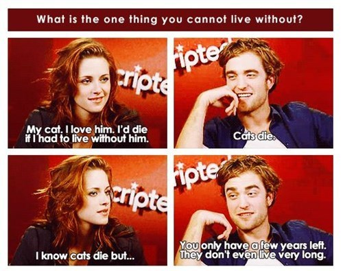 kristen stewart robert pattinson twilight Cats - 7790335744