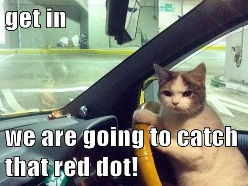 get in   we are going to catch that red dot!