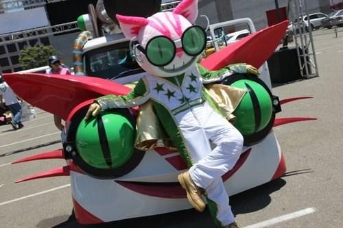 wtf cars Cats funny - 7790693120
