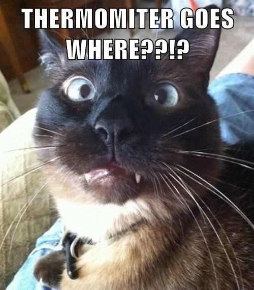 THERMOMITER GOES WHERE??!?