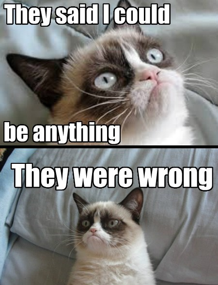 Grumpy Cat Cats funny - 7791557632