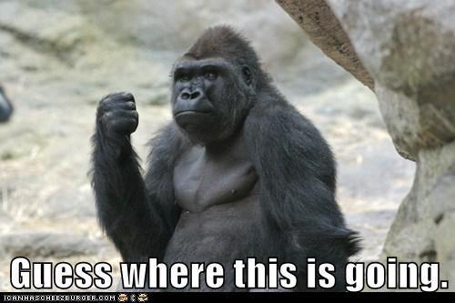punch swing fist funny gorilla - 7791558656
