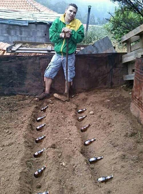 beer garden funny - 7792995584