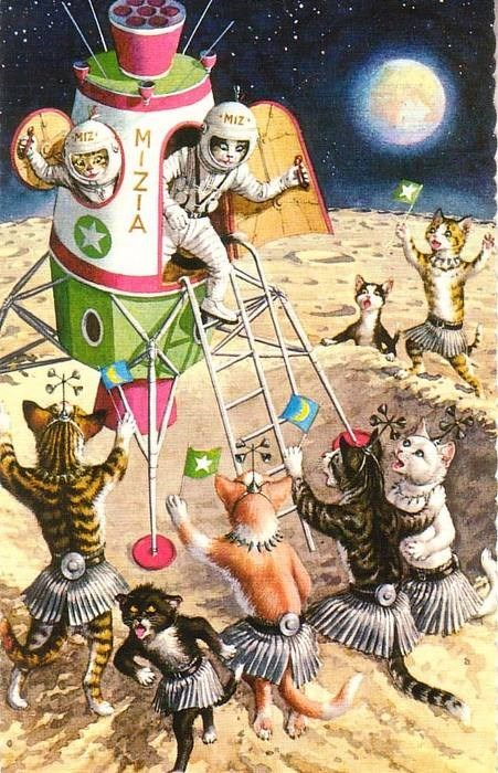 wtf moon Cats funny space - 7793383936