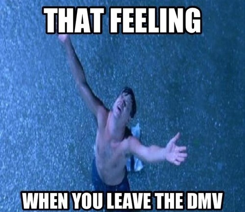 life and stuff,DMV